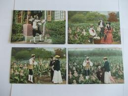 Lot De 4 Cartes D'une Même Série Jardin Et Bébé - Postcards