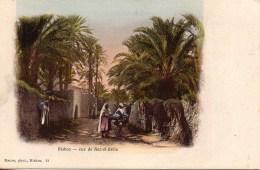 Algérie - BISKRA  Rue De Raz-el-Géria - Biskra