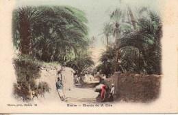 Algérie - BISKRA  Chemin De M. Cide - Biskra