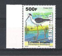 SENEGAL (2009) - 1V (**MNH) - OISEAUX / LES ECHASSIERS - L'ECHASSE BLANCHE - Senegal (1960-...)