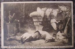 TABLEAU SALON 1902.E.CLAUDE.NATURE MORTE.RENARD CHASSE.1902.DOS NON DIVISE. - Peintures & Tableaux