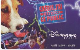 Disneyland Paris - Carte Entrée - 22-06-1999 - Autres Collections