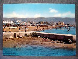 (FG.RR114) MANFREDONIA - LIDO DI SIPONTO - SPIAGGIA ANIMATA (FOGGIA) VIAGGIATA 1969 - Manfredonia