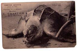 0606 - Publicité Bouillon C.Chartier - Tortue Géante - Eliotype E.Le Deley à Paris - - Schildkröten