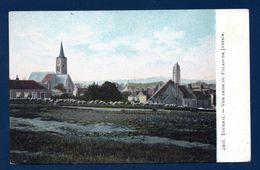 Tournai. Vue Prise Du Palais De Justice. Eglise St. Piat. Berger Et Troupeau De Moutons. Pub Lessive Du Génie - Tournai