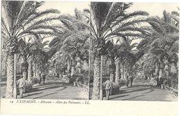 302 - ESPAGNE - ALICANTE - Allée Des Palmiers - Alicante