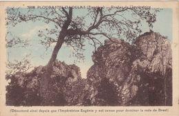 CPA N°3988 Dept 29 PLOUGASTEL DAOULAS Rocher De L'Imperatrice - Plougastel-Daoulas