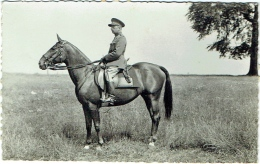 Carte Photo. Militaria. Officier Identifié à Cheval. - Guerre, Militaire