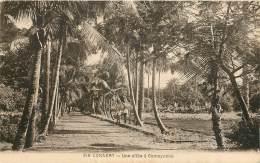 CONAKRY - Une Allée à Camayenne - Guinée Equatoriale