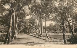 CONAKRY - Une Allée à Camayenne - Guinea Equatoriale