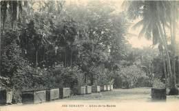 CONAKRY - Allée De La Mairie - Equatorial Guinea