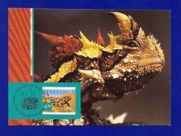 Australien 2002  Mi.Nr. 2140 , Thorny Devil - Maximum Card - First Day Of Issue 4 June 2002 - Maximumkarten (MC)