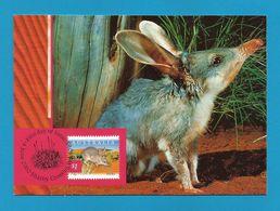 Australien 2002  Mi.Nr. 2139 , Bilby - Maximum Card - First Day Of Issue 4 June 2002 - Maximumkarten (MC)