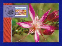 Australien 2002  Mi.Nr. 2138 , Desert Star Flower - Maximum Card - First Day Of Issue 4 June 2002 - Maximumkarten (MC)