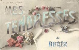 15 - MES TENDRESSES DE NEUVEGLISE - CANTAL - VOIR SCANS - Autres Communes