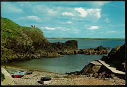 RB 1194 - 1975 Postcard - Newtown Cove - County Waterford - Ireland Eire - Waterford