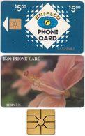 13/ Bahamas; P2. Hibiscus, Gold CN, Chip GEM 1B.1 - Bahamas