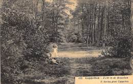 Cappellen. - Zicht In De Bosschen. -  F. Hoelen, Phot. Cappellen. - Kapellen