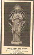 DP. ZUSTER FELICITAS (MARIA VERTOMMEN ) ° PUTTE (MECHELEN) 1867 - + BLAUBERG (HERSELT) 1911 - Religion & Esotérisme