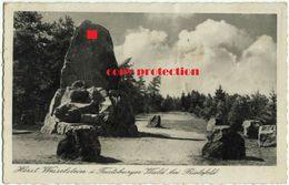 Horst Wessel Stein Im Teutoburger Wald Bei Bielefeld, Wesselstein, Alte Postkarte 1937 - Bielefeld