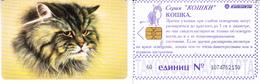 Phonecard   Russia. Kuban  30 Units - Russia