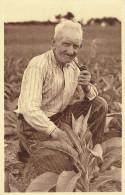 Rochehaut (frahan Sur Semois) Tabac Barthelemy Despat - Bouillon