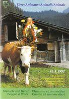 Switzerland / 1992 / Animals / Philatelic Postage Stamps Prospectus, Leaflet, Brochure - Fachliteratur