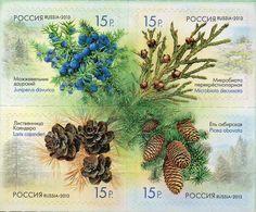 Russia, 2013, Mi. 1914-17, Flora, MNH - 1992-.... Federation