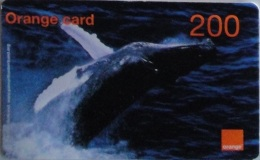 ORANGE : OR-18 200 Whales USED Exp:31-12-2008 - Dominik. Republik