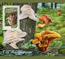 Central Africa 2017 Mushrooms S2017-12 - Centrafricaine (République)