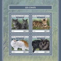 Djibouti 2017 Cats S2017-12 - Djibouti (1977-...)