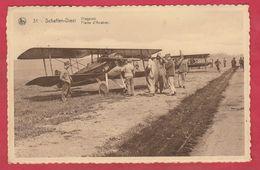 Schaffen-Diest - Vliegplein / Plaine D'Aviation - 1936 ( Verso Zien ) - Diest