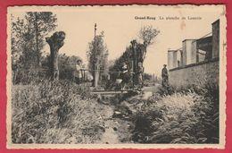 Grand-Reng - La Planche De Lamerie ( Voir Verso ) - Erquelinnes