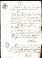 CHEMELLIER (Maine-et-Loire) - 14 Décembre 1816 - Extrait D'Etat Civil Relatif à Un Décès En Septembre 1790 - Manuscrits