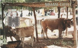 *GAMBIA* - Scheda Usata A CHIP - Gambia