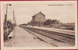 Petegem Oudenaarde De Statie Station La Gare (In Zeer Goede Staat) - Oudenaarde