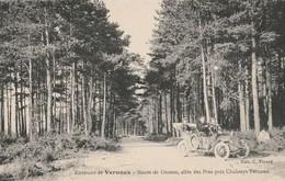 Ardéche : VERNOUX : Route De Grozon, Allée Des Pins Près Chabreyt-vernoux - Vernoux