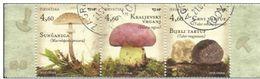 HR 2013-1091-3 MUSHROOMS, HRVATSKA CROATIA, 1 X 3v, MNH - Pilze