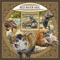 Sierra Leone 2018 Red River Hog S201801 - Sierra Leone (1961-...)