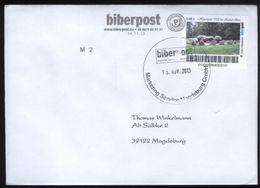 Biber Post, Gelaufener FDC 0,48 € Hühnengrab  Bei Noord-Sleen V. 15.11.2013 #1367 - [7] Repubblica Federale