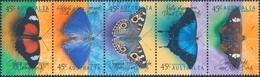 Australie Vlinders - Vlinders