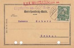 11723-CARTOLINA COMMERCIALE AFFRANCATA 5 HELLER PERFIN - 1850-1918 Impero