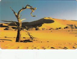 Namibia  Phonecard Desert - Superb Used - Namibia