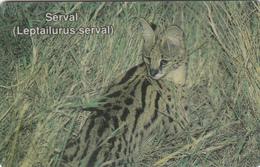 Namibia Serval - Superb Used - Namibia