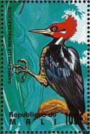 Mali . 1995.  Crimson-crested Woodpecker. Pic De Malherbe - Climbing Birds