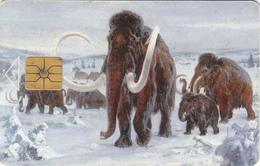 Czech Republic  Phonecard - Mammoth - Superb Used - Iceland