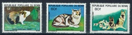 Benin, Domesticated Animals, 1981, MNH VF Complete Set Of 3 - Bénin – Dahomey (1960-...)