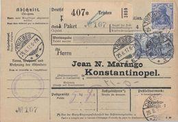DR Paketkarte Mif Minr.87II, 95II Triebes 25.8.17 Gel. Nach Konstantinopel - Deutschland