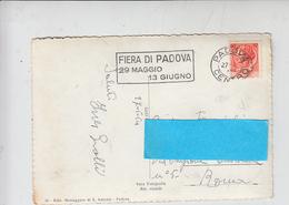 ITALIA 1954 - FIERA DI PADOVA - Targhetta - Esposizioni Universali