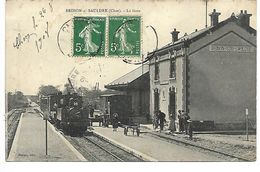 BRINON SUR SAULDRE - La Gare - TRAIN - Brinon-sur-Sauldre